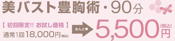 美バスト豊胸術・90分【初回限定!!お試し価格】通常1回 18,000円→5,500円